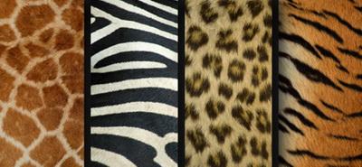 Как носить пальто со «звериным» принтом: 6 главных приемов сезона